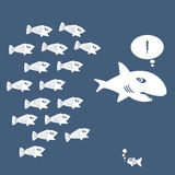 Little Fish Eat Big Fish. Unity, Teamwork, Organize Concept Stock Image