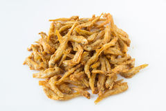 Little fish fry. Is crisp from Asia food Stock Images
