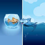 Little fishes Royalty Free Stock Images