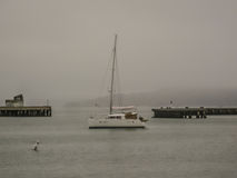 Little Fishing Boat Foggy Bay. Taken in San Francisco California on a foogy morning, a fishing boat sails out into the bay royalty free stock photos