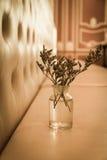 Little flower in bottle Stock Photo