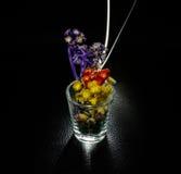 Little flower light Royalty Free Stock Photo