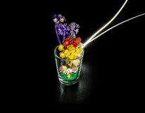 Little flower light Stock Images