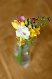 Little flowers bouquet Royalty Free Stock Photos