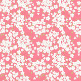 Little flowers and  leaves seamless pattern Royalty Free Stock Photos