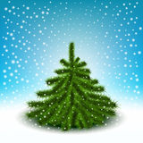 Little fluffy Christmas tree Royalty Free Stock Photos