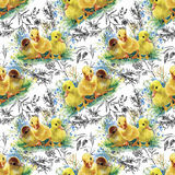 Little fluffy cute watercolor ducklings, chickens and hares with eggs seamless pattern on white background vector illustration.  Stock Image