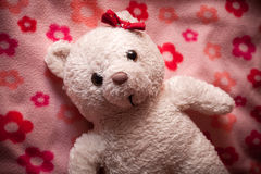 Little fluffy teddy bear Stock Photography