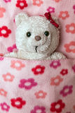 Little fluffy teddy bear Stock Photo