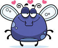 Little Fly in Love Stock Image