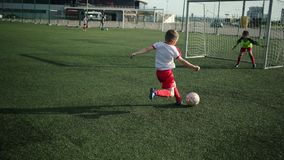 Little football player is kicking ball into goal. Playing soccer stock video