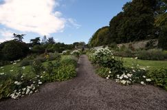 Little foothpath in a garden full of flowers. In the irish country Royalty Free Stock Image