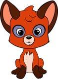 Little fox Stock Photos