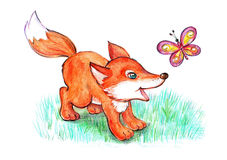 Little fox playing with butterfly Stock Image
