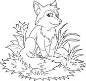 Little fox sitting on the lawn Stock Photography