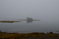 Little French Island in the Fog Stock Images