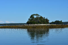 Little French Island Reflected in the Ocean Royalty Free Stock Photography