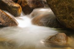 Little fresh waterfall in rainsforest. Royalty Free Stock Photos