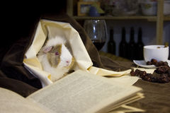 A little friend listening to the stories of an old book Royalty Free Stock Images
