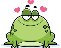 Little Frog Love Stock Images