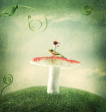 Little frog on the magical mushroom Stock Image