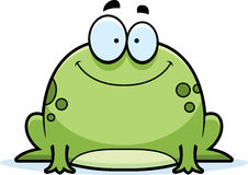Little Frog Smiling Stock Photos