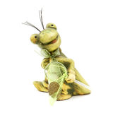 Little frog toy with a seine Royalty Free Stock Photos