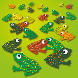 Little frogs on the green meadow Royalty Free Stock Photo