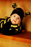 Little funny baby with bee costume Royalty Free Stock Photos