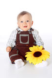 Little funny baby with sunflower in hand in overalls Royalty Free Stock Photography