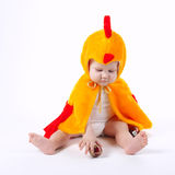 Little funny boy in chicken costume. On white Stock Image