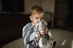Little funny boy hugs cat Royalty Free Stock Photos