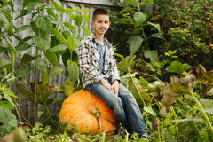 Little funny boy with pumpkins Royalty Free Stock Photo