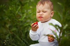 Little funny boy with strawberry Stock Photos