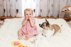 Little funny Caucasian girl the child sits at home on the floor on a light carpet with the best friend of the half-breed dog with. Spotty color and short hair Royalty Free Stock Photos