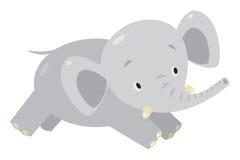 Little funny elephant or jumbo Royalty Free Stock Photography