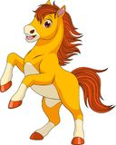 Little funny foaln. Vector illustration, funny baby foal, on a white background, fun playing, coloring pagesn Stock Image