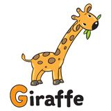Little funny giraffe, for ABC. Alphabet G. Children vector illustration of little funny giraffe eating green leafs. Alphabet A Stock Photography