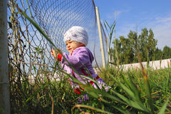 Little funny girl with fence. In park Stock Photography
