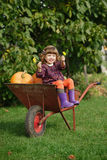 Little funny girl with pumpkins Stock Photography