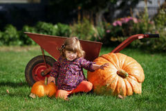 Little funny girl with pumpkins Royalty Free Stock Photo