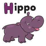 Little funny hippo, for ABC. Alphabet H. Children vector illustration of little funny hippo or hippopotamus. Alphabet H stock illustration