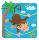 Little funny monkey on lians Stock Image