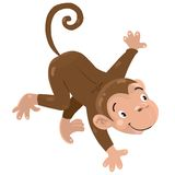 Little funny monkey Royalty Free Stock Photography