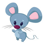 Little funny mouse Royalty Free Stock Photo