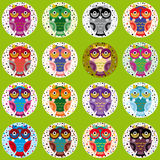 Little funny owls on green background. Vector Stock Image