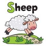 Little funny sheep, for ABC. Alphabet S Royalty Free Stock Image