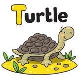 Little funny turtle, for ABC. Alphabet T. Coloring picture of little funny turtle on the sand near the palm. Alphabet T Royalty Free Stock Photos