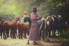 Rural Girl Royalty Free Stock Photo