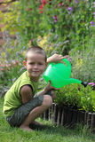 Little gardener. 7 years old boy with watering can - kids royalty free stock image